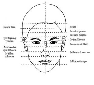 lectura del rostro